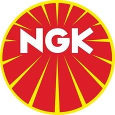 NGK - BUJIE - D8EVX PLATIN