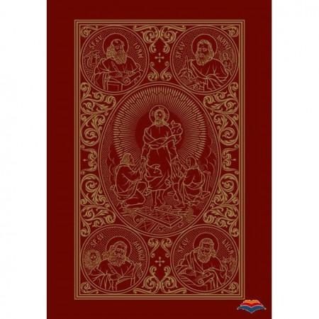 Sfanta si Dumnezeiasca Evanghelie ilustrata - format mic