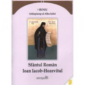 Sfantul Roman Ioan Iacob-Hozevitul