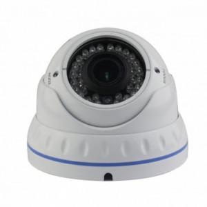 Camera Vidy 1.3MP VD-13F1W-Q