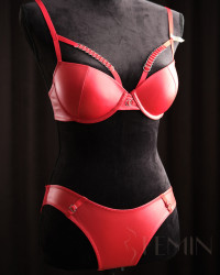 Set Red Leather