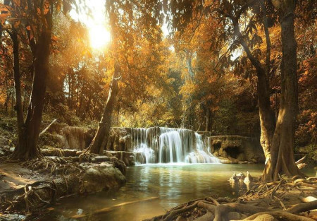 Calm forest with small waterfall - 10470