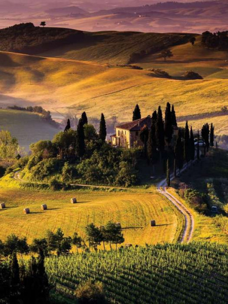 Countryside landscape photo wall mural - 169A