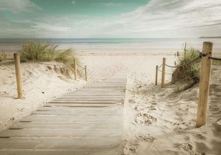 Path to the fine sand beach wallpaper - 11597