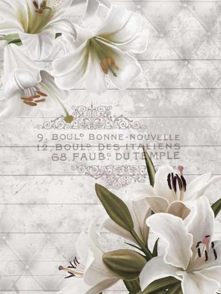 Daylilies wall mural - 10051A