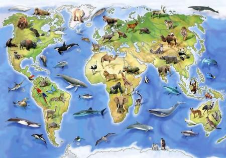 Animal world map for children, kids room wall mural - 12844
