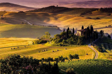 Country landscape calming wall mural - 169