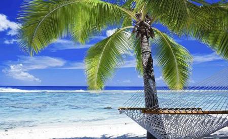 Tropical palms on a white sand beach mural - 578