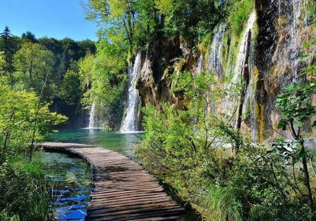 Zen path along green bushes and rocks - 11845