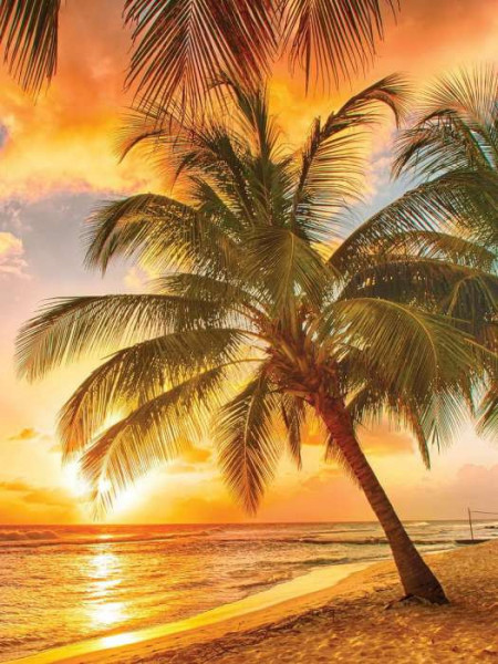 Sunset on a paradise tropical island wallpaper - 3393A