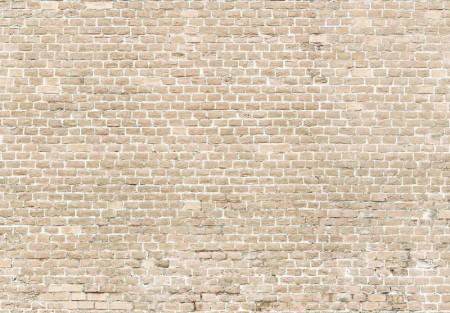 Wall Mural - 13994