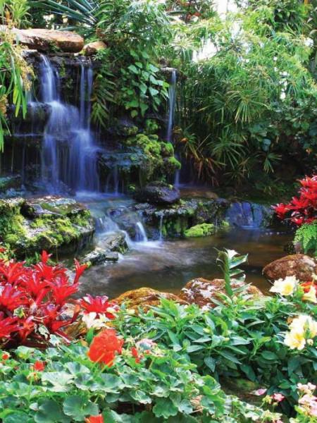Zen garden waterfalls with blossoms - 166A