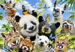 All kinds of animals, kids room wallpaper - 12871