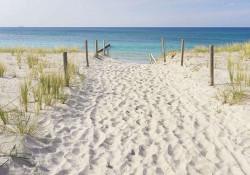 Footsteps in the sand wallpaper - 10387