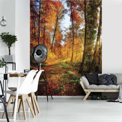Forest path in the colored autumn wallpaper - 12108A