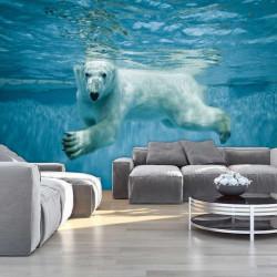 Polar bear in the water wall mural - 12621