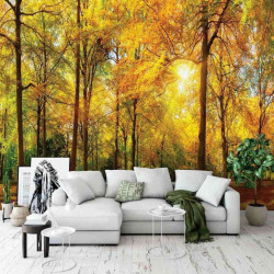 Sunny day in a beautiful forest wall mural - 13460