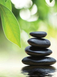 Zen stones, green leaves and water image - 174A