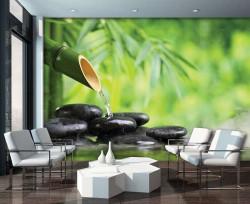 Zen wall decal. relaxing photowall -11407