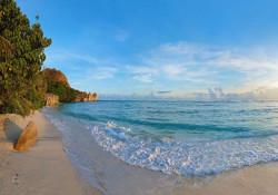Exotic beach photo wall mural - 11849