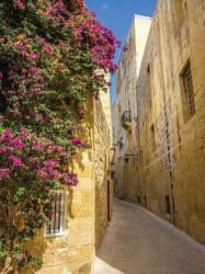 Mediterranean street wallpaper - 2129A