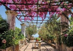Blossomed garden on sunny day - 10334