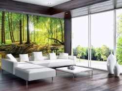 Forest lake scene wall murral - 10513