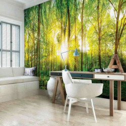 Morning sunlight in the forest wallpaper - 13461