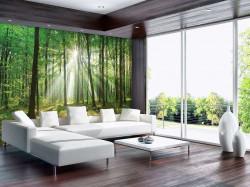 Sunbeams breaking through wallpaper - 10329