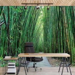 Bamboo zen garden walk wall mural - 12632