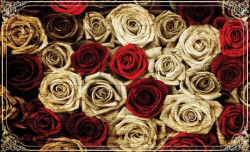 Fifthy roses of all colors wallpaper - 3101
