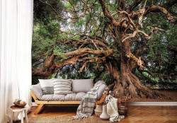 Magical old tree wall mural - 13011