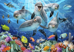 Smiling dolphins, wallpaper for kids - 12849