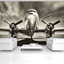 Old airplane, black and white photowall - 11728