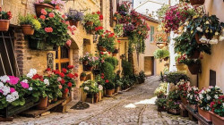 Old town street with flowers in the Mediterranean wall print - 1339