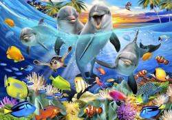 Under the ocean animals life wallpaper, dolphins - 12851