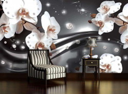 White orchids - 2313