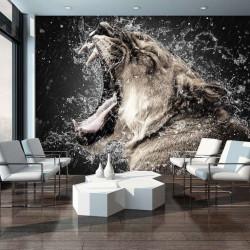Wild cat, animals wallpaper - 13005