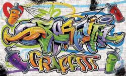 Graffiti indoor wall decoration - 1399