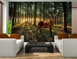 Male deer in a green forest wall mural - 3194
