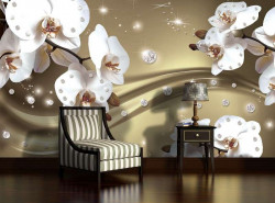 Orchids - 2314