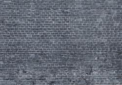 Wall Mural - 13995
