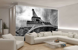 Wide angle photo image of Eiffel tower - 221