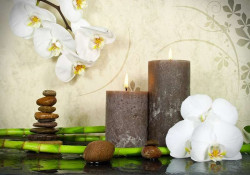 Orchids, stones and candles zen wall decor -13018