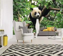 Panda wall mural - 10238