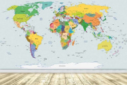 World political map mural - C0478