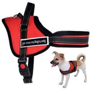 Нагръдник за куче Sports Dog