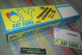 Alberi a camme Catcams Clio 1.8 16v o 2.0 Williams immagini