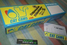 Alberi a camme Catcams Clio RS 172 o 182 immagini