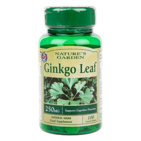 Ginkgo Biloba Frunză 250mg 100 tablete